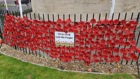 Chatteris Royal British legion youth section create a veill of poppies to commemorate the 100th anni