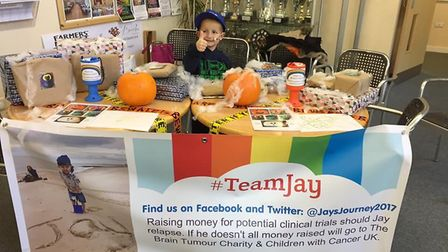 More than £100 was raised for six-year-old Ely hero Jay Davison from a rock hunt and painting sessio
