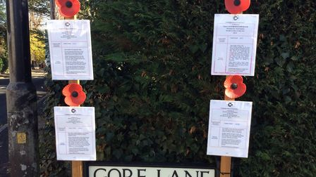 Posters decorated with poppies were placed around Rayne giving information about the soldiers who di
