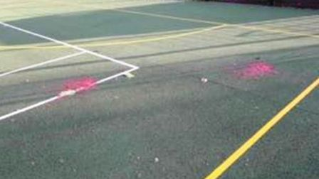 The site in Estover Road was attacked by vandals yesterday (November 13), with posts on social media