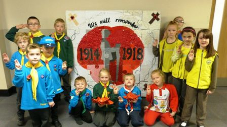 Children at Westwood Primary School read poems about poppies and In Flanders Field and learned about