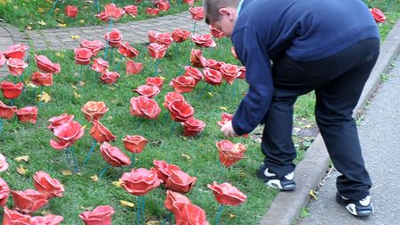 Remembrance Day at Westwood Primary School, March in 2015. Pupil Kevin laying one of the poppies. Pi