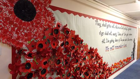 Children at Thomas Eaton Primary Academy in Wimblington produced poppies of different fabrics and de
