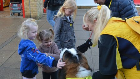 Dogs and volunteers from Dog Therapy Nationwide outside Ely's Waitrose supermarket raising awareness