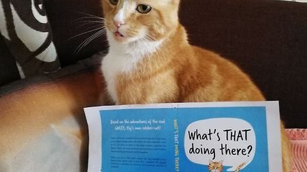 Garfield, known as Mr Sainsbury's,is publishing a book about his fictional adventures. Called What'