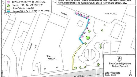 Car park in Ely is set to have new replacement hedges planted following a consultation in 2018. Pict