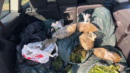 A large amount of cannabis was recovered from a river near Whittlesey today (Wednesday February 27).
