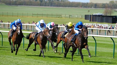 Ely residents are being offered free entry to the first day of racing at Newmarket on Tuesday April