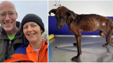 Ely work colleagues Jane and Tony to jump out of plane to raise lifesaving funds for rescue dog Asha