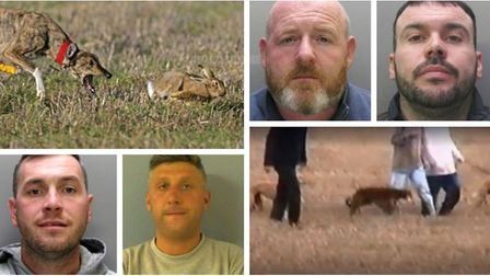 Hare coursing across Cambridgeshire has been cut by 19 per cent this year due to four civil injuncti