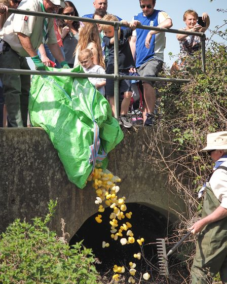 The annual Rayne Duck Race. Picture: CELIA BARTLETT PHOTOGRAPHY