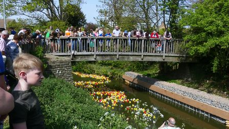 Duck Race at Whittlesey: It was a sell out for ducks this year (over 1,000) and a great crowd turned