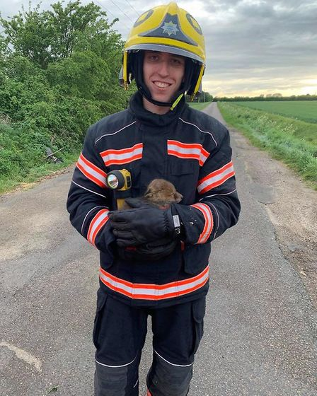 A baby fox named Blaze was rescued when fire crews were called to tackle a fire in Whitecross Road,