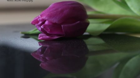Budding photographer Helena Mueller has won a competition in Ely on her first time of entering after
