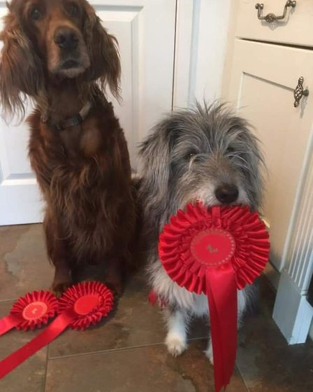 Lacey and Keira with their rosettes after the Coldham Dog Show.