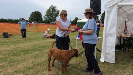 Emma Juden with Jethro who was awarded two first place rosettes and one second from the judge for ag