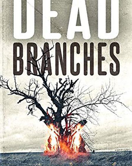 Witchford author Benjamin Langley publishes debut novel 'Dead Branches', which is described as a com