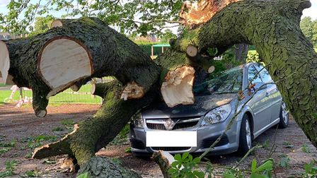Crushed: One man had a lucky escape today after part of a tree crashed onto his parked car i n Manea