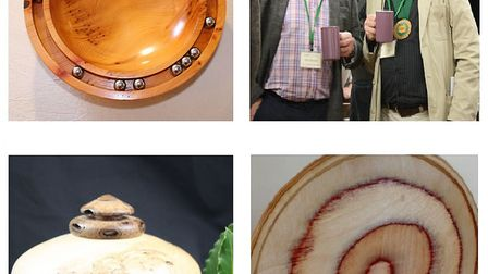 Annual 'Art in Wood' exhibition by Ely Guild of Woodturners to showcase unique craft. Picture: WOODT