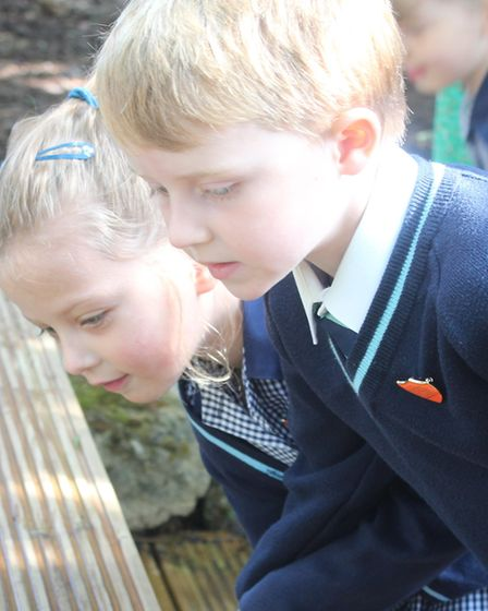 Pupils at King's Ely Acremont enjoying the official conservation area opening. Picture: JORDAN DAY