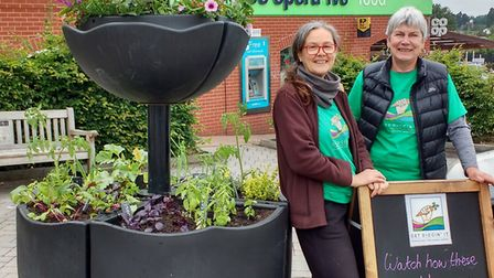 Jenny Lynn and volunteer, Trauti Hard standing next to the planters. Picture: CONTRIBUTED