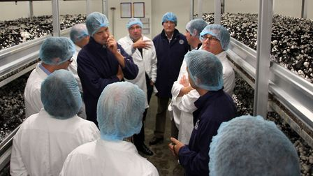 A number of workers at Littleport Mushroom Farm were taken to hospital after a chemical incident. Pi