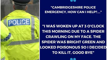 """A 999 call about killing a """"poisonous"""" spider prompted police to issue a warning. Picture: CAMBS POL"""