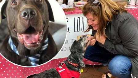 Following Sages Way: A well-known East Cambs pooch who died in 2016 has had his online legacy contin