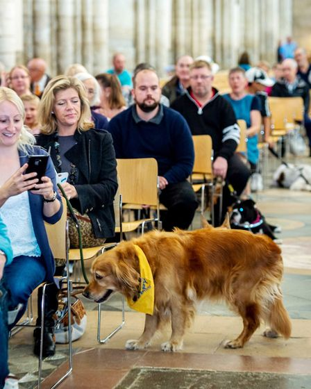 A special service in honour of all creatures great and small took place at Ely Cathedral. Picture: E