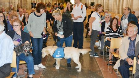 A special service in honour of all creatures great and small took place at Ely Cathedral. Picture: M