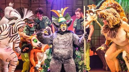 X-Factor winner Matt Terry leads the cast of Madagascar the Musical, which is at Peterborough's New