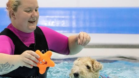 A therapy centre to support dogs recovering from injuries that has a water treadmill – and even a he
