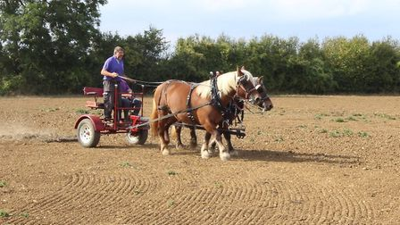 Rides on mini chariots were available during the open day. Picture: CONTRIBUTED