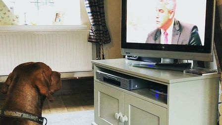 """""""At home, Bailey our dog helps put Brexit in context,"""" says Steve Barclay. """"He seems more interested"""
