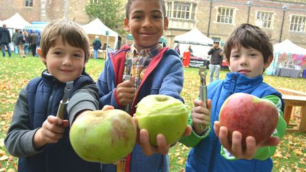 Ely Apple Festival, (l-r) Jeremy, Seb, James, from Ely, peeling their apples. Picture: ARCHANT