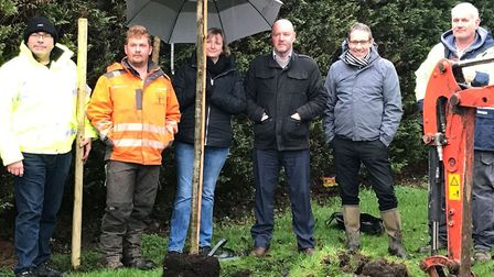 The oak trees planted at The Avenue in March were funded by the likes of March Town Council, UK Towb