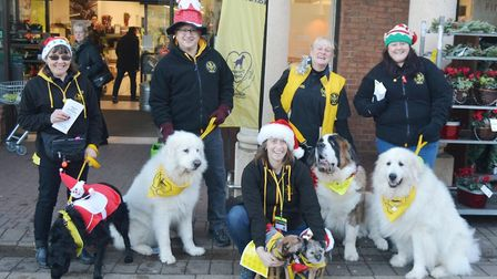 Dogs that provide comfort and care to people in need were on hand to spread Christmas joy in Ely. Pi