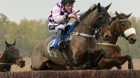 Undisputed in action at Cottenham. Picture: GRAHAM BISHOP PHOTOGRAPHY