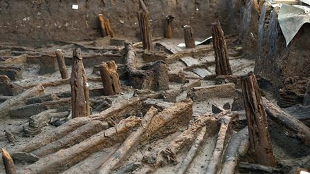 Bronze Age Palisade (c1000-800 BC). A continuous row of ash poles encircling the pile dwelling. Copy