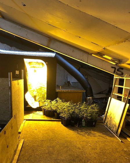 Alexandru Imre, 30, filled a business unit in Kings Dyke, Whittlesey, with makeshift growing rooms a