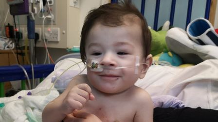 Almost £3,000 has been raised for the family of Ely 'fighter' Loki after thieves break into Caye and