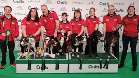 The Cambridgeshire Flyball team after their quarter-final at Crufts. Picture: CAMBRIDGESHIRE FLYBALL