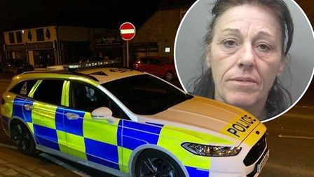 Teresa Gaskin (inset) stole cash from a cancer charity collection box and robbed a charity shop in a