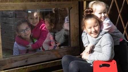 Bethany and Sophie Henry-Elliott aged 9 and 5 with Lily and Emily Furnell aged 7 and 4 thanks to a w