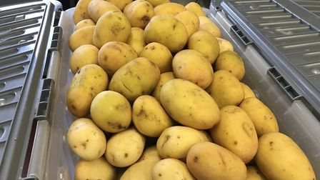 Fresh potatoes arrive at the hotel. Picture: Supplied