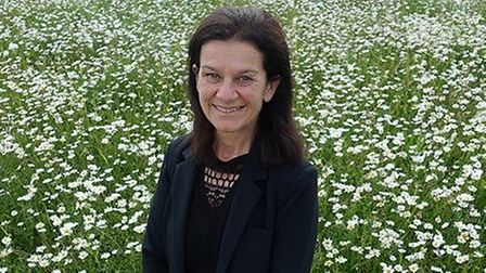 South Cambs Council leader Bridget Smith: 'The mayor informed me last Thursday (April 23) by phone t