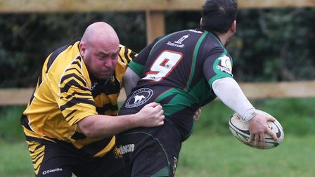 Chris Day, chairman of Ely Tigers, said he is overwhelmed by the amount of support received for play