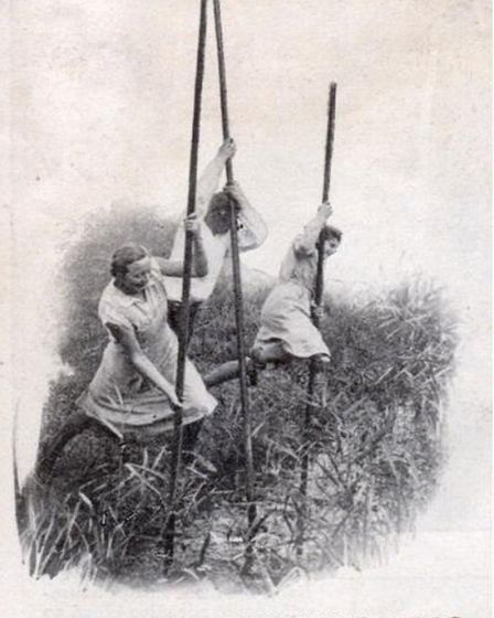 Go back in time you find reference to the Fen 'slodgers', who fought against draining of the Fens. I