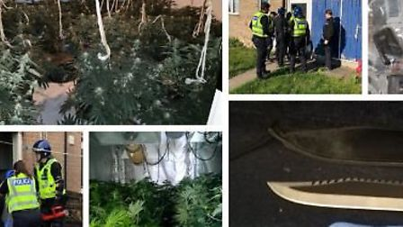 Snapshot of the some of the drug raids carried out across Cambridgeshire in the past month. Whilst m