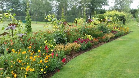 The herbaceous borders at Scrips House - open under the National Gardens Scheme